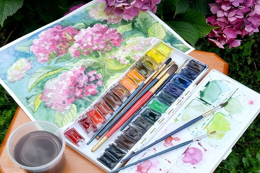 Professional Watercolor Paints