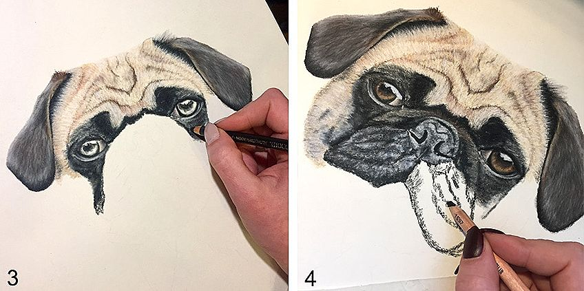 How to Draw a Dog Step by Step 2