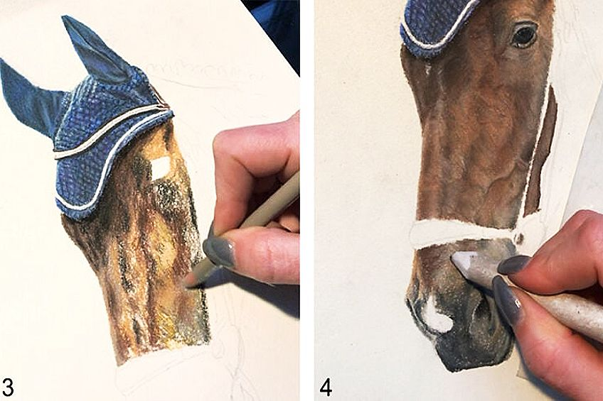 Second Step to Draw a Horse Head