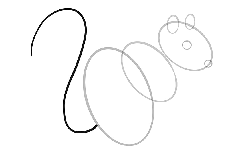 How to Draw a Squirrel Step 06