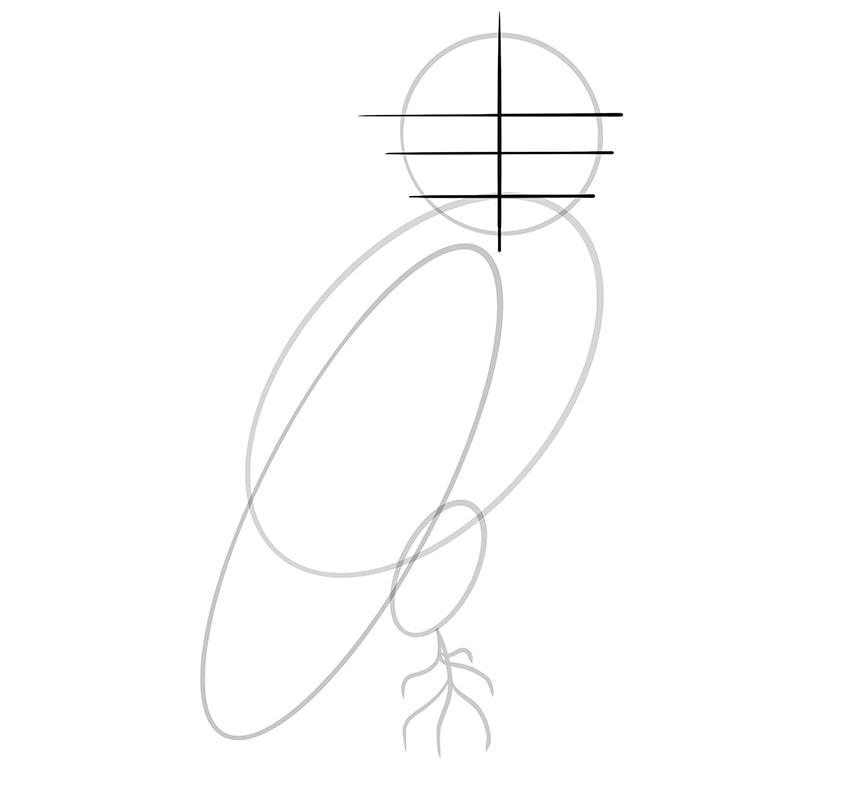 Step 06 of Owl Drawing