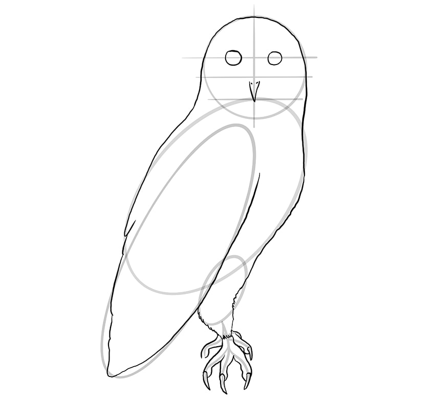 Step 08 of Owl Drawing
