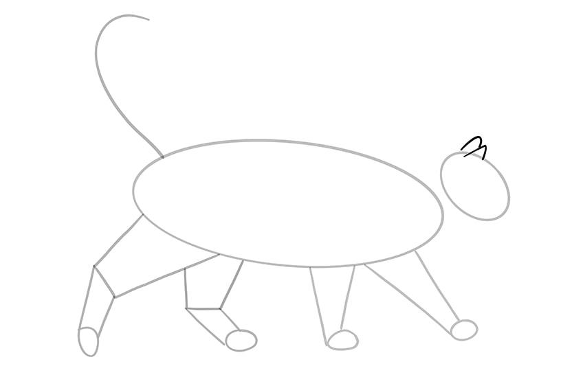 cat drawing 10
