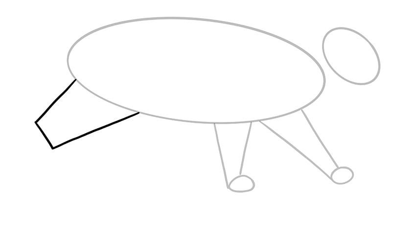 cat drawing 5