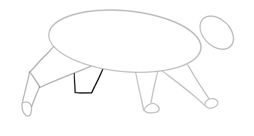 cat drawing 7