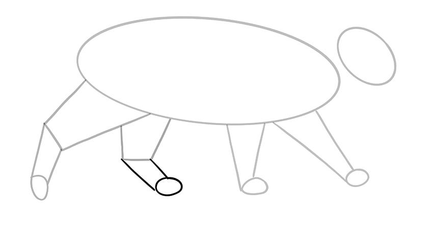 cat drawing 8