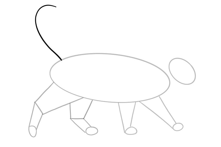 cat drawing 9