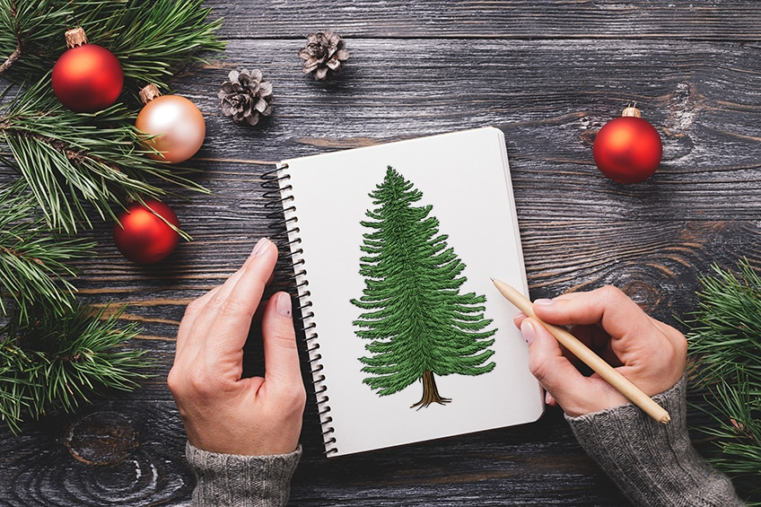 how to draw a conifer tree 2
