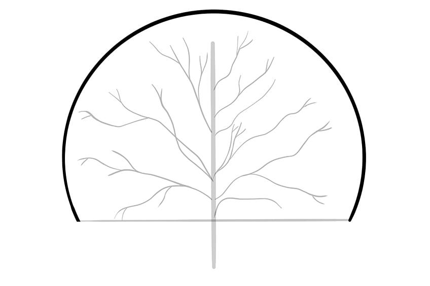 tree drawing 4