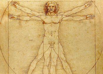 The Vitruvian Man da Vinci