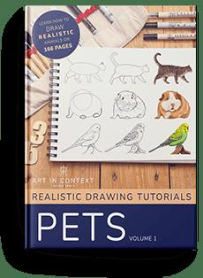ebook animal drawing-pets-bloom