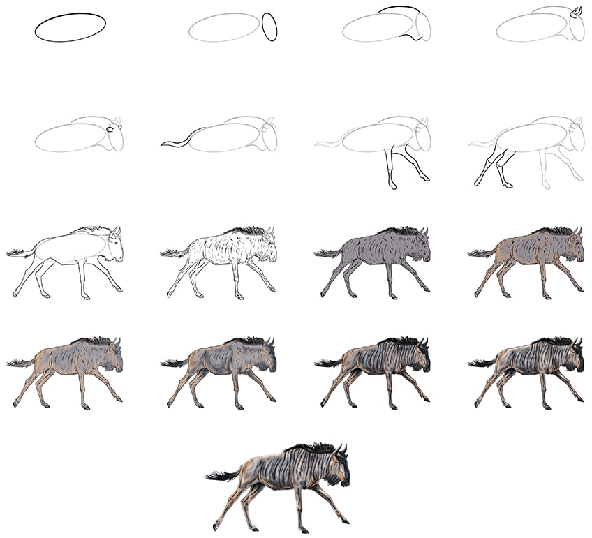how to draw a wildebeest collage