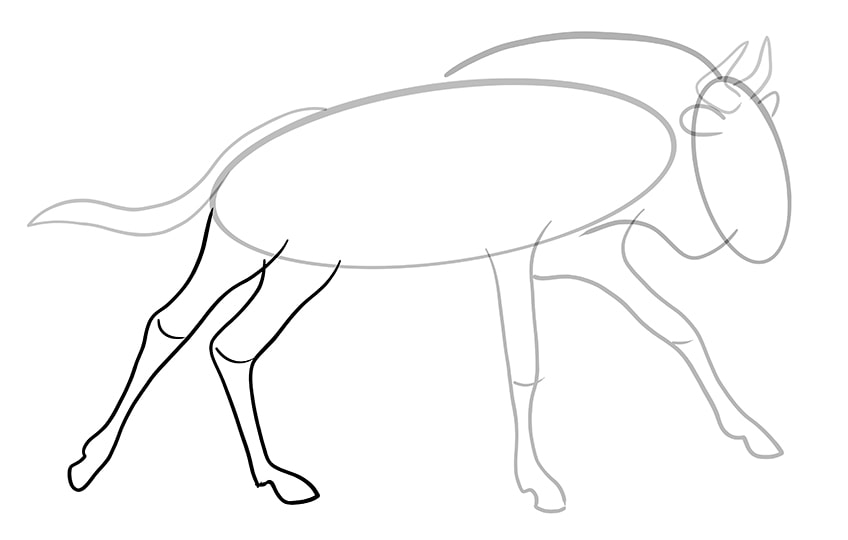 wildebeest drawing 8